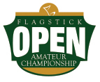 Large flagstick open logo