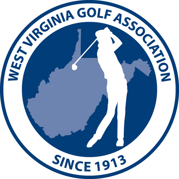 Large new wvga logo